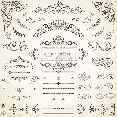 Fototapete Ornate vintage design elements with calligraphy swirls, swashes, ornate motifs and scrolls. Vector illustration.