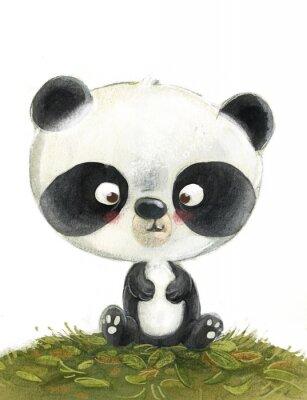 Fototapete oso panda pequeño