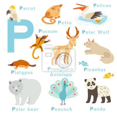 P Brief Tiere gesetzt. Englisches Alphabet. Vektor-Illustration, isoliert auf weißem Hintergrund