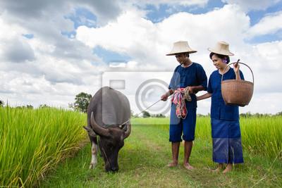 Paar Bauer Bauer in Anzug mit auf Reisfeldern