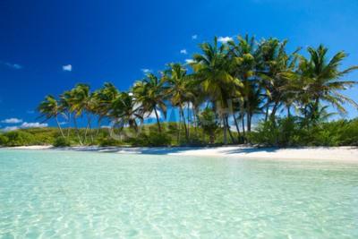 Fototapete Palm und tropischen Strand
