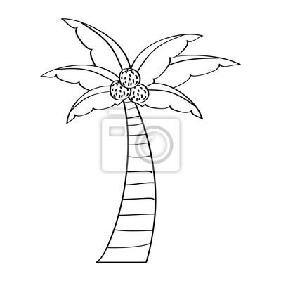 Palme kokosnuss pflanze baum strand flora vektor illustration ...