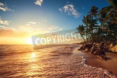 Fototapete Palmen auf dem tropischen Strand, Sonnenaufgang erschossen