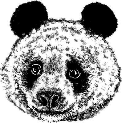 Fototapete Panda 01