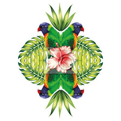 Papagei, pflanzen und hibiskus blume weißen hintergrund fototapete ...