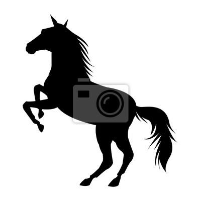 Pferd Symbol Tierwelt Natur Und Fauna Thema Isoliert Schwarz Weiß