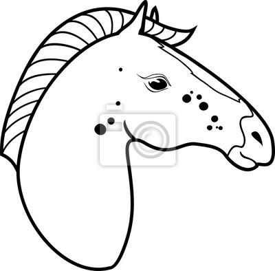 Pferdekopf malvorlagen fototapete • fototapeten Färben, Wohnung ...