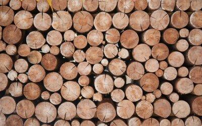 Fototapete Pile of wood logs stumps for winter