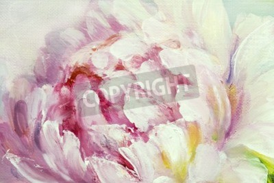 Fototapete Pink and white peony background. Oil painting floral texture