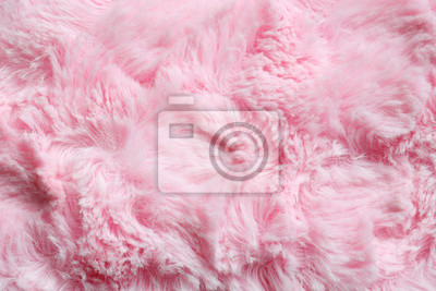 Fototapete Pink fur background. Surface wool texture. Copy space for your text