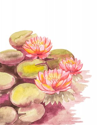 Fototapete Pink lotuses with brown-green leaves, top right blank background for an inscription, watercolor handwork.