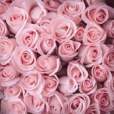Fototapete pink rose flower bouquet vintage background