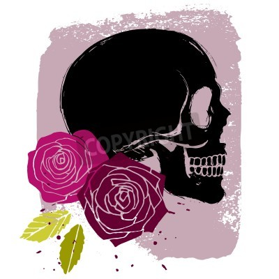 Fototapete Pink roses with leaves and side-face black skull, vector illustration in grunge style on background
