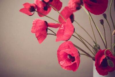 Fototapete Poppies über Vintage Hintergrund mit Retro-Filter
