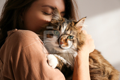 Fototapete Portrait of young woman holding cute siberian cat with green eyes. Female hugging her cute long hair kitty. Background, copy space, close up. Adorable domestic pet concept.