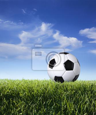 Profil von Fußball im Gras gegen den blauen Himmel