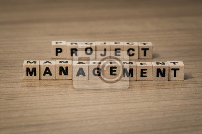 project management in wooden cubes