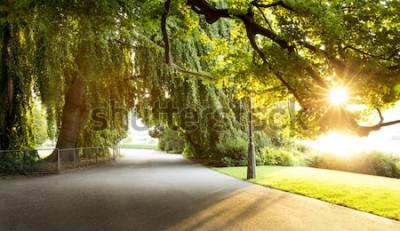 Fototapete Promenade in einem schönen Stadtpark