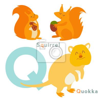 Q Buchstabe Tiere gesetzt. Englisches Alphabet. Vektor-Illustration, isoliert auf weißem Hintergrund