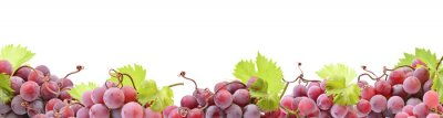 Fototapete Red grape isolated on white