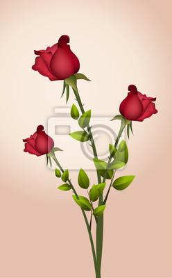 Red Rose, Vektor-