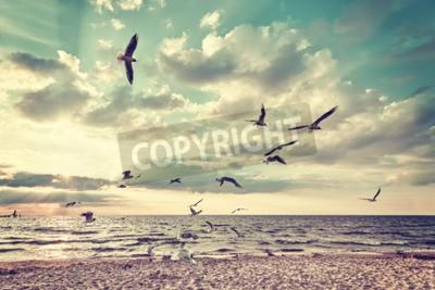 Fototapete Retro stilisierte Strand mit fliegenden Vögeln bei Sonnenuntergang.