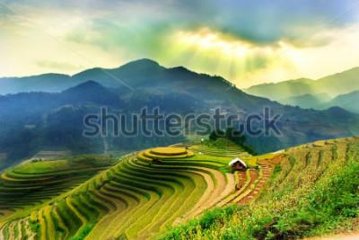 Fototapete Rice fields on terraced of Mu Cang Chai, YenBai, Vietnam. Vietnam landscapes.