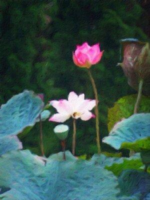 Rosafarbener lotos / abstrakter Ölgemälde-Fotoneffekt