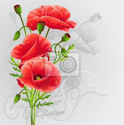 Rote Mohnblumen auf einem grauen Hintergrund