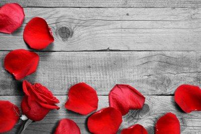 Fototapete Rote Rose und Blütenblätter auf schwarzem und weißem hölzernem Hintergrund
