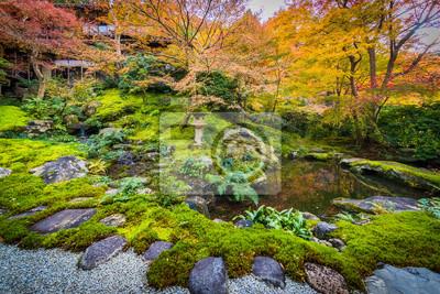 Roter Und Gelber Baum Im Japanischen Garten Fototapete Fototapeten