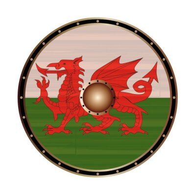 Round Viking Style Shield With Welsh Dragon Flag