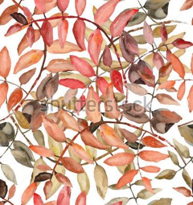 Fototapete Rowan Blätter in Aquarell