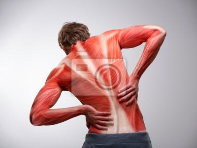 Rückenschmerzen. rückansicht des athleten mann torso mit ...