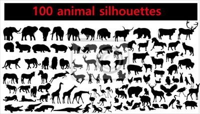 Fototapete Sammlung Tierschattenbilder auf weißem Hintergrund