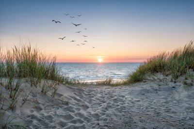 Fototapete Sand dunes on the beach at sunset