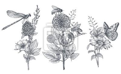 Fototapete Satz Blumenblumensträuße mit drei Vektoren mit Schwarzweiss-Hand gezeichneten Kräutern, Wildflowers und Insekten