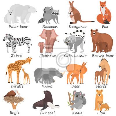 Erfreut Tiere Und Ihre Babys Arbeitsblatt Ideen - Mathe Arbeitsblatt ...