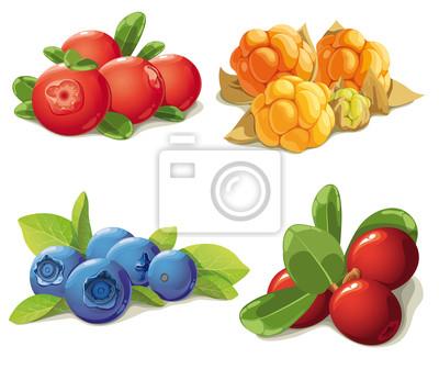 Satz von reifen Beeren