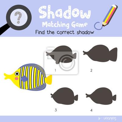 Schatten matching spiel von angelfish tiere für vorschule kinder ...