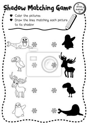 Schatten Matching Spiel Von Arktischen Tieren Für Vorschule Kinder