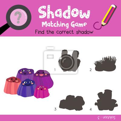 Schatten matching spiel von barnacles tiere für vorschule kinder ...