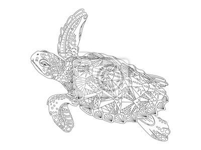Schildkröte Malbuch für Erwachsene Vektor