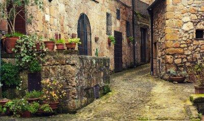 Fototapete Schmale Straße der mittelalterlichen alten Tuff-Stadt Sorano mit grünen Pflanzen und Kopfsteinpflaster, Reise Italien Hintergrund
