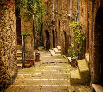 Fototapete Schmale Straße der mittelalterlichen Tuff-Stadt Pitigliano mit grünen Pflanzen und gepflasterten Treppen, Reisen Italien Jahrgang Hintergrund