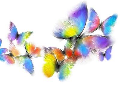 Fototapete Schmetterlinge