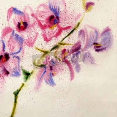 Fototapete Schöne Aquarell Orchidee