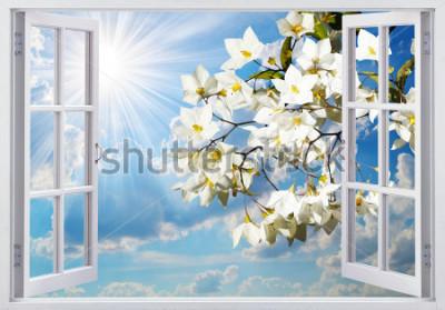 Fototapete Schöne Aussicht aus dem Fenster