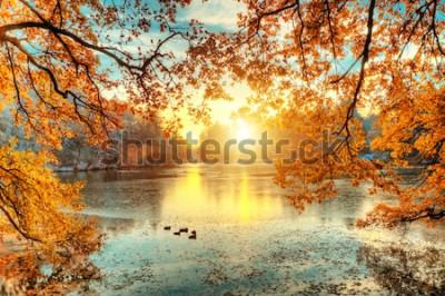 Fototapete Schöne farbige Bäume mit See im Herbst, Landschaftsphotographie. Spätherbst und Winteranfang. Outdoor und Natur.