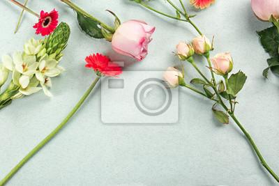 Schöne frische Blumen auf farbigem Hintergrund